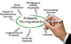 how to pay property taxes4