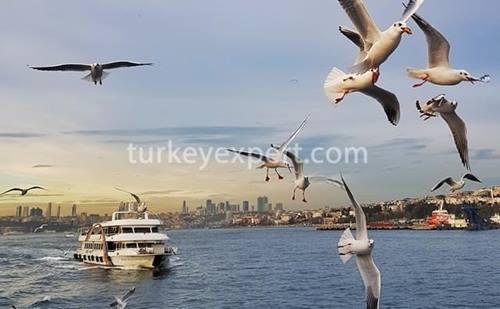 برترین مکان های دیدنی استانبول که باید در سفر اولتان ببینید