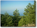 Land with amazing sea views in Fethiye Faralya