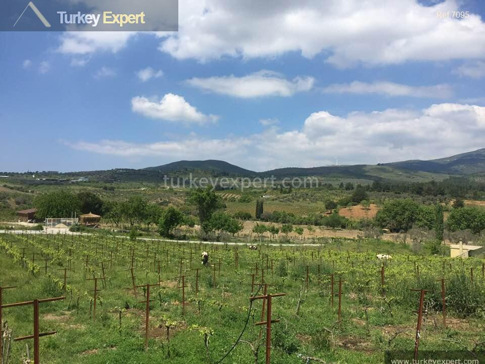 farm for sale in yenikoy10