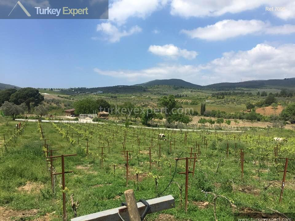 farm for sale in yenikoy4