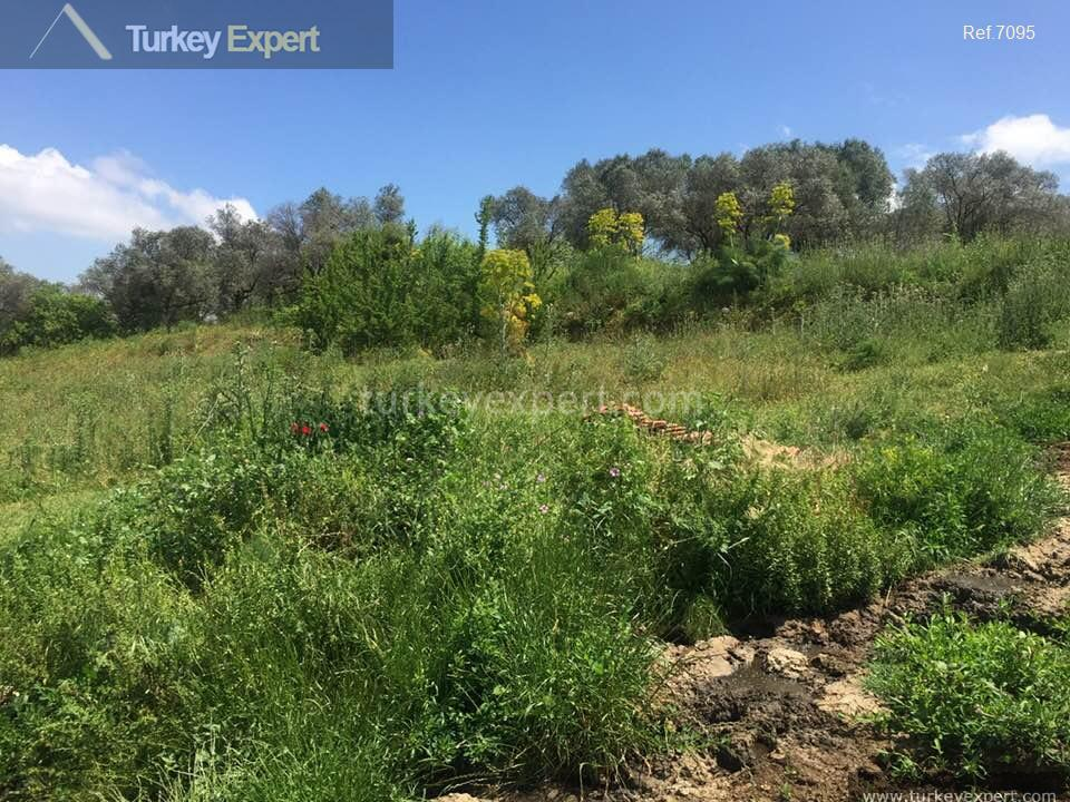 farm for sale in yenikoy8