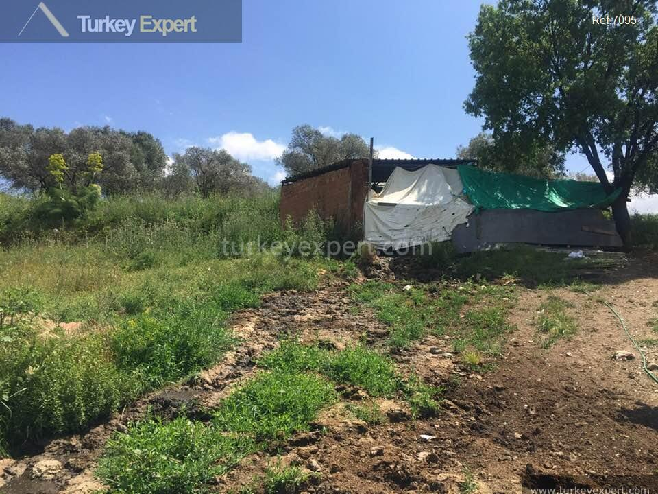 farm for sale in yenikoy9